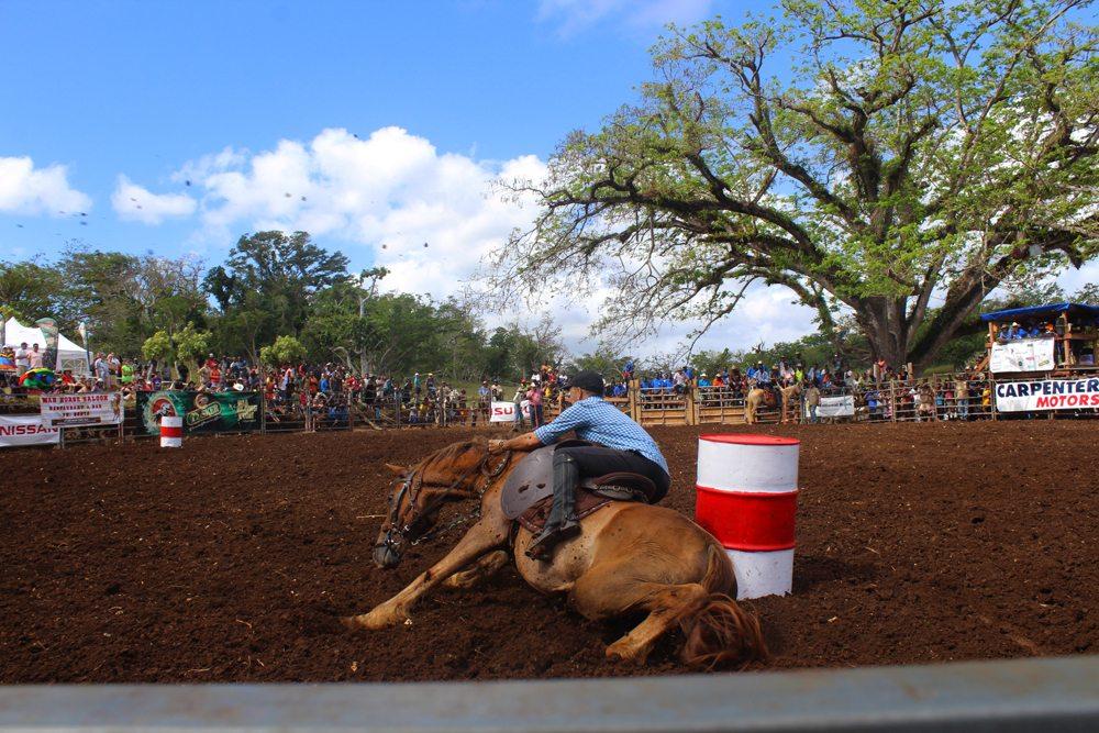 Port Vila Rodeo