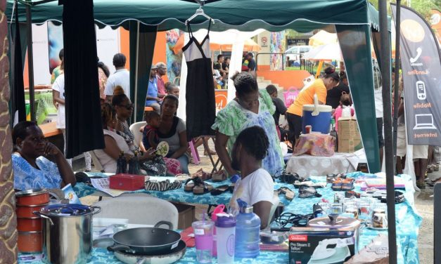 Expect bigger flea market next year: Organizers