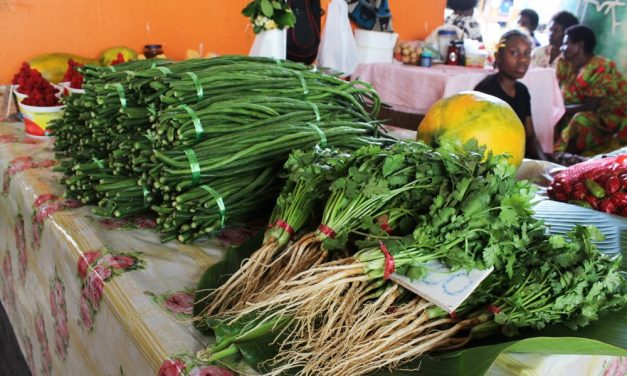 Port Vila Market Haos – Affordable, Organic and Fresh Local Produce