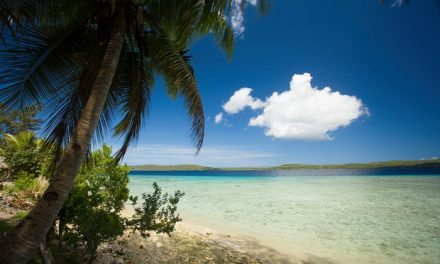 South Pacific islands ban western junk food and go organic