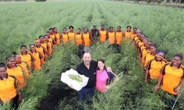 Seasonal Worker Program: Vanuatu to the rescue