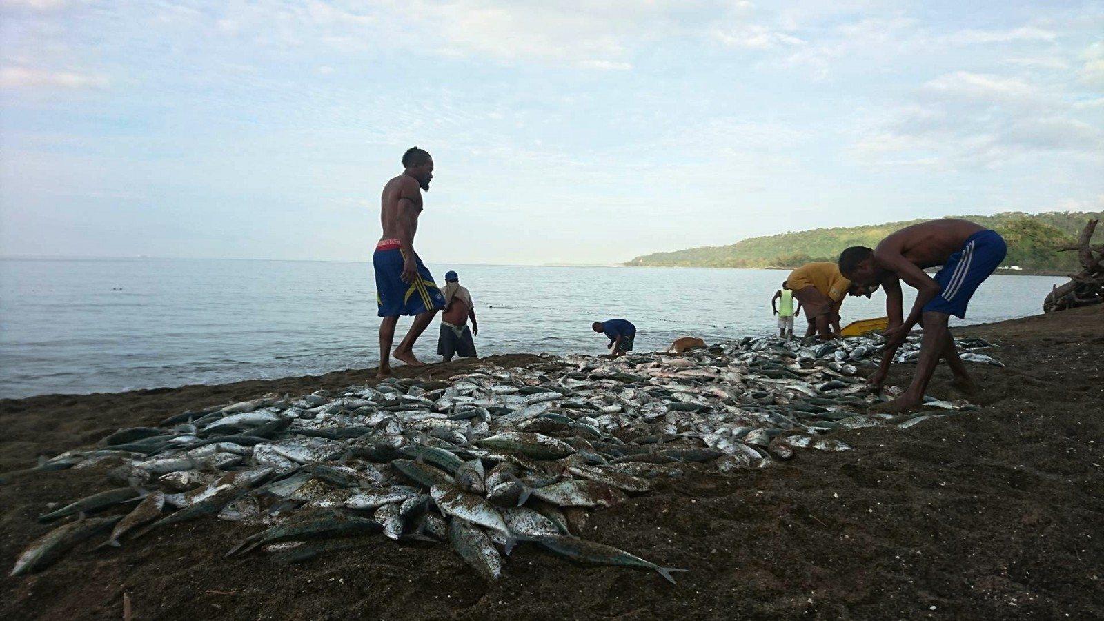 netfishingvanuatu