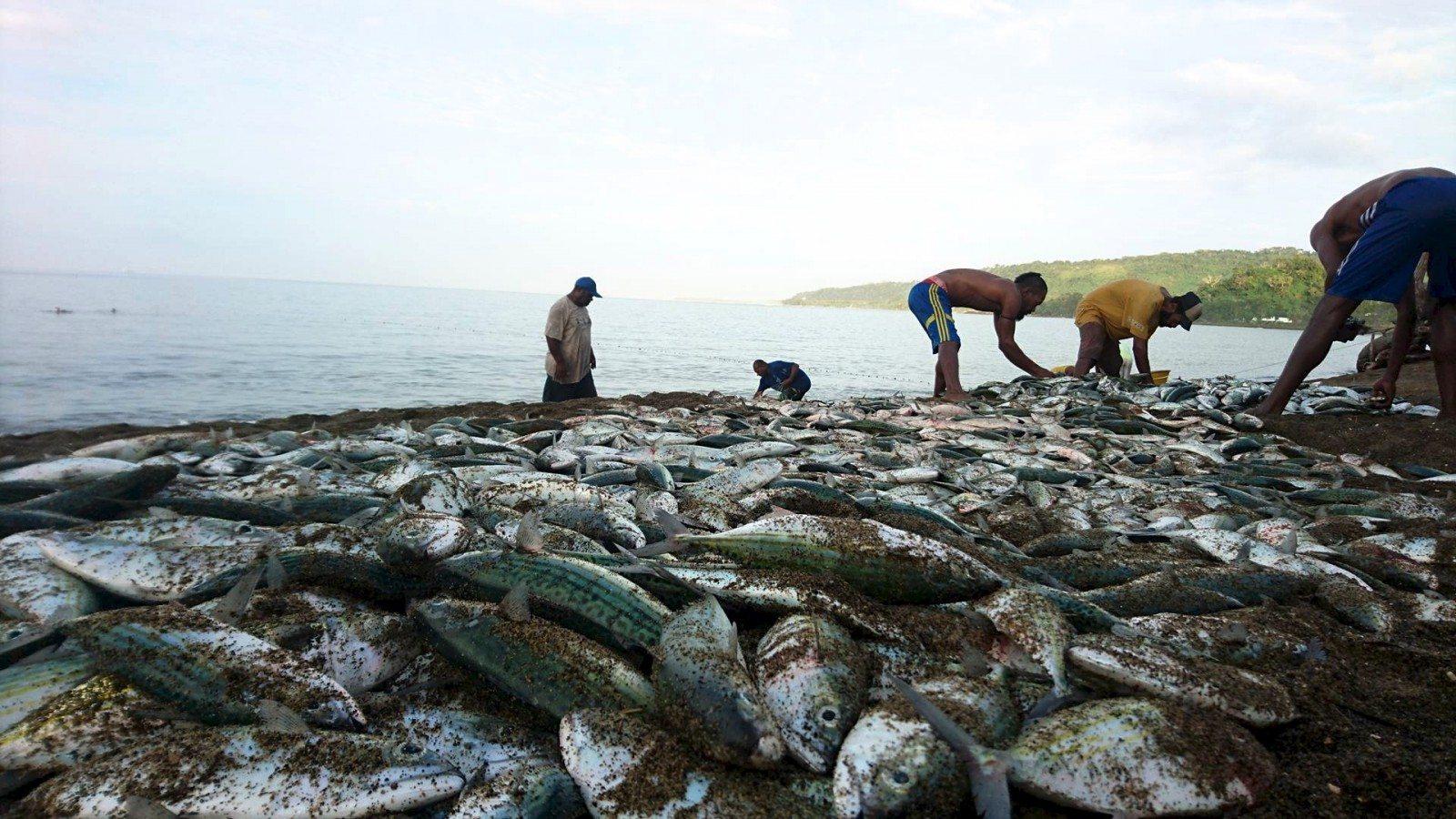 netfishingmele