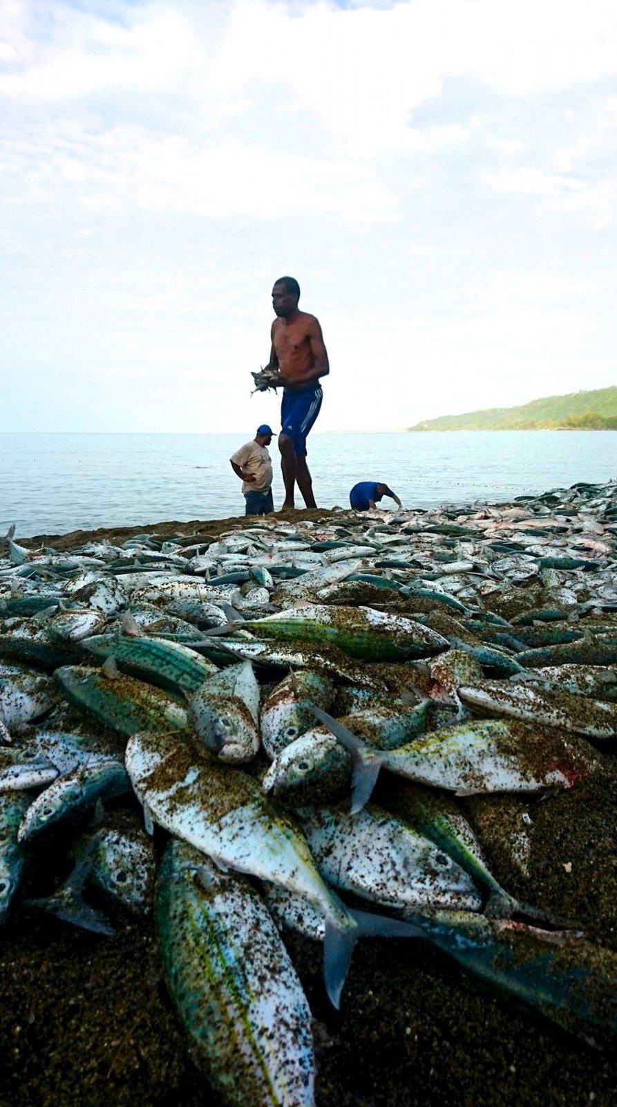 netfishingblacksands