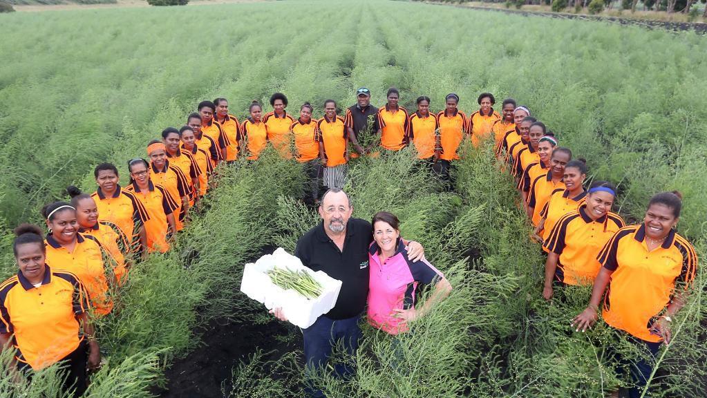 seasonal-workers-vanuatu