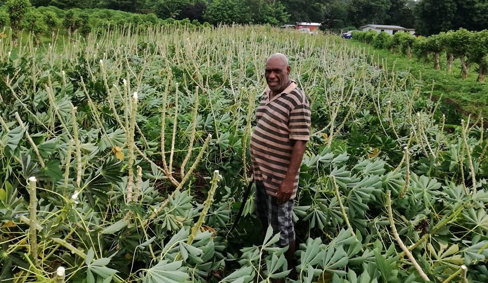 department-blong-agriculture-vanuatu