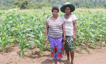 DARD to organize 'Women in Agriculture-Vanuatu' Workshop