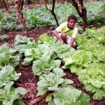 inclusive-agriculture